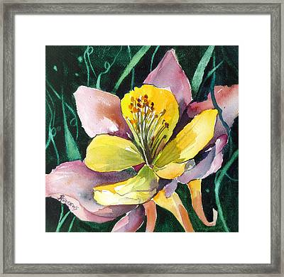 The Unveiling Framed Print by Rae Andrews