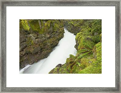 The Upper Rogue River Flows Framed Print by William Sutton