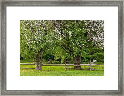 The Valley Awakens 2 Framed Print