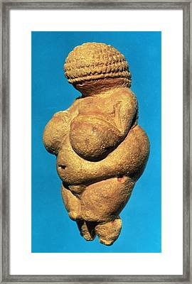 The Venus Of Willendorf, Side View Of Female Figurine, Gravettian Culture, Upper Palaeolithic Framed Print