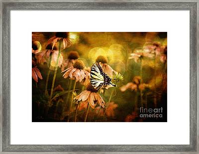 The Very Young At Heart Framed Print