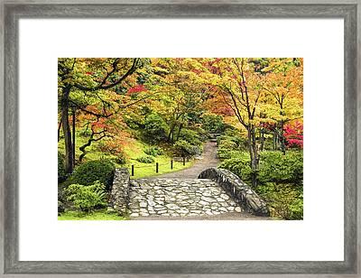 The Vibrant Path Framed Print