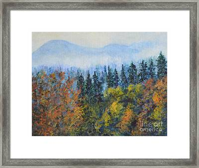 The View Framed Print by Jana Baker