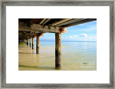 The View Framed Print by Margie Amberge