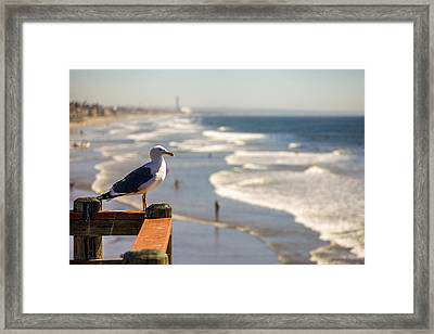 The View Point Framed Print