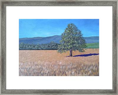 Framed Print featuring the painting The View by Suzanne Theis