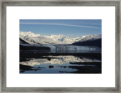Double Take Framed Print by Ted Raynor