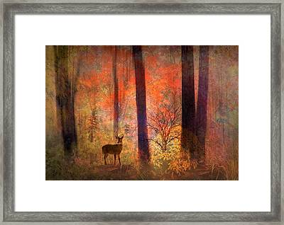 The Visitor Framed Print by Jessica Jenney
