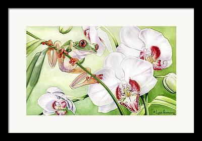 Frog Watercolor Framed Prints