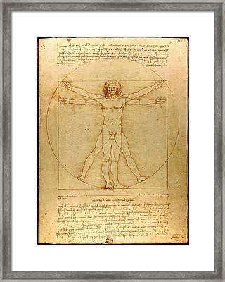 The Vitruvian Man Framed Print by Mountain Dreams
