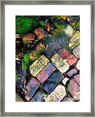 The Walk Home Framed Print