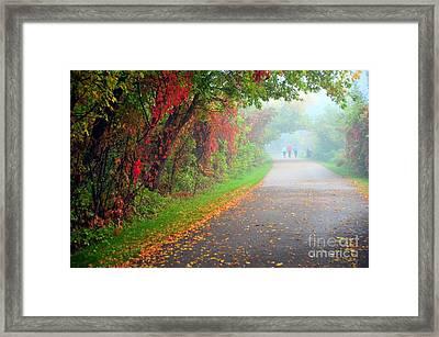 The Walk Framed Print by Terri Gostola