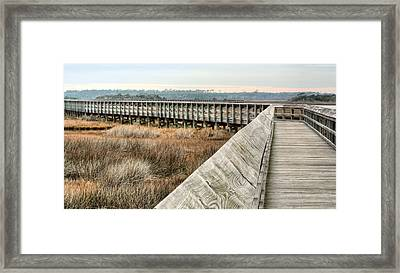 The Walkway Framed Print by JC Findley