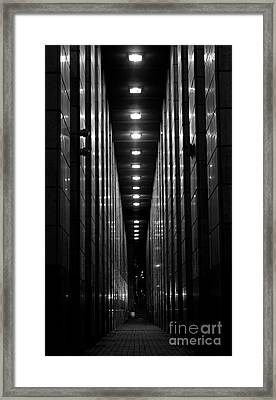 The Walkway Framed Print by Steven Parker