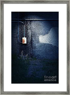 The Wall Pt 2 Framed Print by Trish Mistric