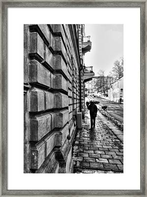 The Wall Framed Print by Stelios Kleanthous