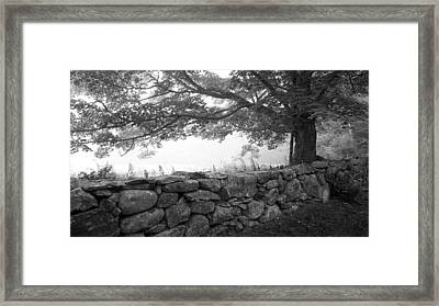 The Walls Of Woodlawn Framed Print