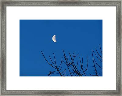 The Waning Is The Hardest Part Framed Print by Wild Thing