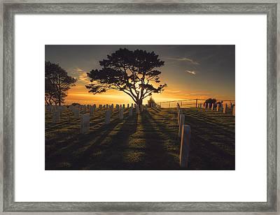 The Warmth  Framed Print by Kenny Noddin