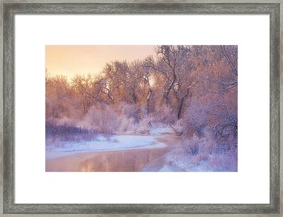 The Warmth Of Winter Framed Print by Darren  White