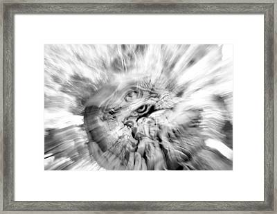 The Warping Eye Framed Print by Frederico Borges
