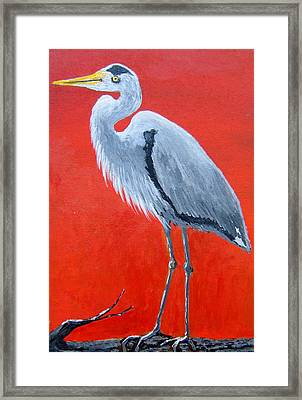 The Watcher Framed Print by Suzanne Theis