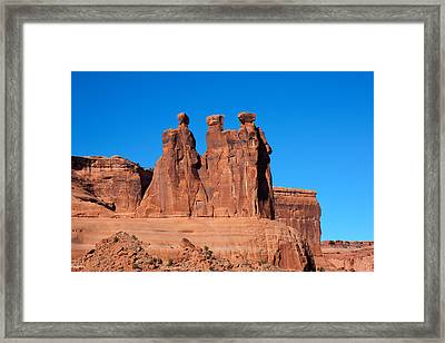 Framed Print featuring the photograph The Watchers by John M Bailey