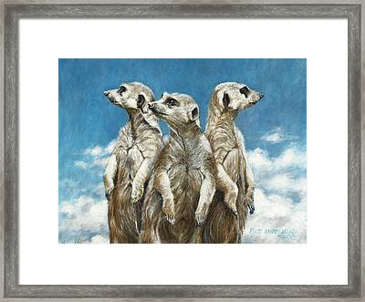 The Watchers Framed Print by Rob Dreyer