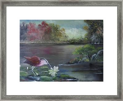 The Water Bird Framed Print by M Bhatt