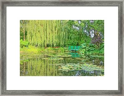 The Water Garden Framed Print