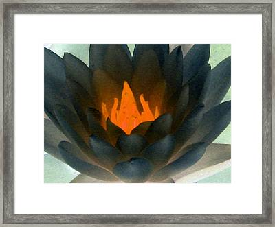 Framed Print featuring the photograph The Water Lilies Collection - Photopower 1038 by Pamela Critchlow