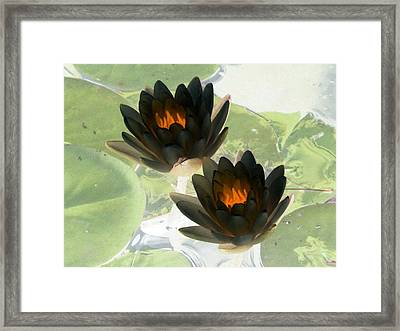 Framed Print featuring the photograph The Water Lilies Collection - Photopower 1041 by Pamela Critchlow