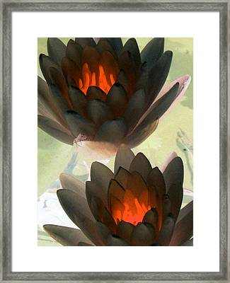 Framed Print featuring the photograph The Water Lilies Collection - Photopower 1042 by Pamela Critchlow