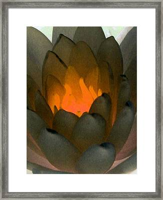 Framed Print featuring the photograph The Water Lilies Collection - Photopower 1043 by Pamela Critchlow