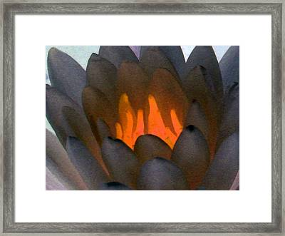 Framed Print featuring the photograph The Water Lilies Collection - Photopower 1044 by Pamela Critchlow