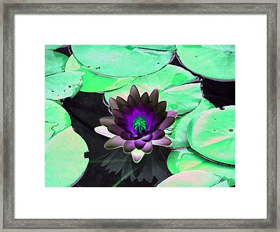 Framed Print featuring the photograph The Water Lilies Collection - Photopower 1113 by Pamela Critchlow