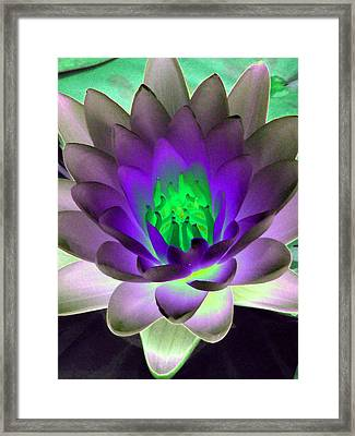 Framed Print featuring the photograph The Water Lilies Collection - Photopower 1115 by Pamela Critchlow