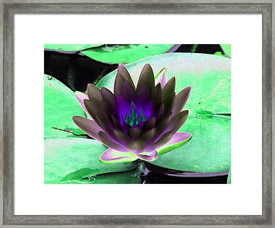 Framed Print featuring the photograph The Water Lilies Collection - Photopower 1116 by Pamela Critchlow