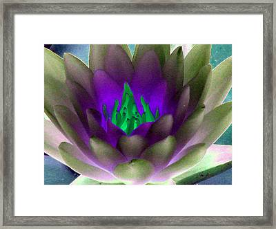 Framed Print featuring the photograph The Water Lilies Collection - Photopower 1117 by Pamela Critchlow