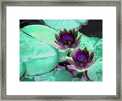Framed Print featuring the photograph The Water Lilies Collection - Photopower 1118 by Pamela Critchlow