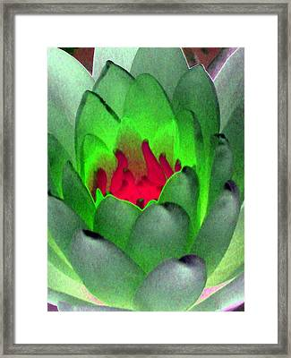 Framed Print featuring the photograph The Water Lilies Collection - Photopower 1122 by Pamela Critchlow