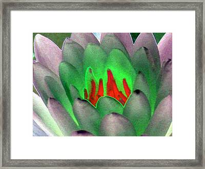 Framed Print featuring the photograph The Water Lilies Collection - Photopower 1123 by Pamela Critchlow