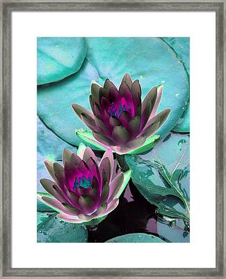 Framed Print featuring the photograph The Water Lilies Collection - Photopower 1124 by Pamela Critchlow