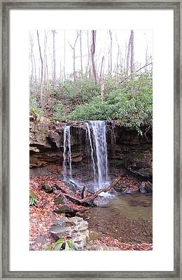The Waterfall Framed Print by Diane Mitchell