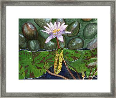 Framed Print featuring the painting The Waterlily by Laura Forde