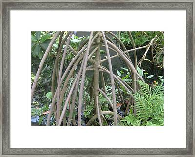 The Watery Thunder Dome Framed Print