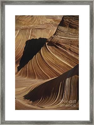 The Wave, Arizona Framed Print by Mark Newman
