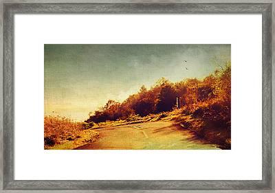 The Way Down. Trossachs National Park. Scotland Framed Print by Jenny Rainbow
