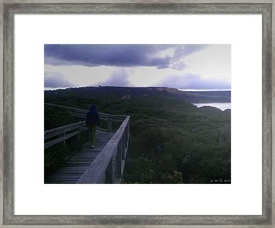 The Way Home Framed Print by Amanda Holmes Tzafrir