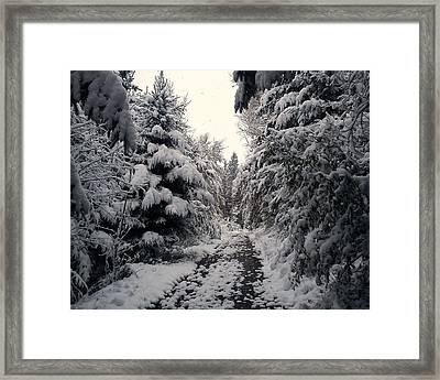 Framed Print featuring the photograph The Way In Snow by Felicia Tica